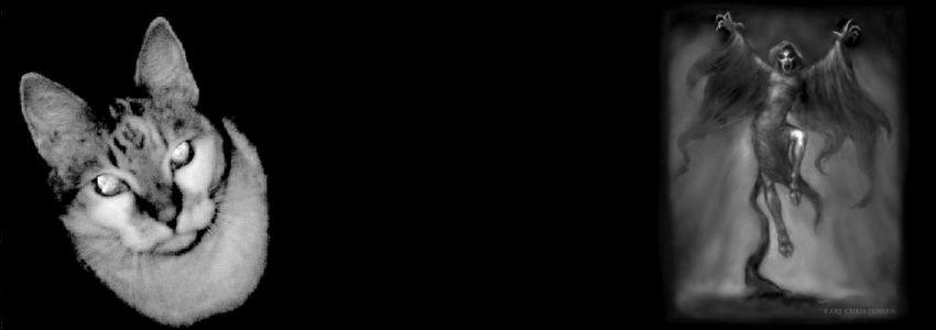 1425940.jpg