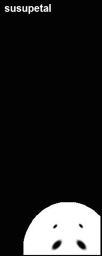 1428575.jpg