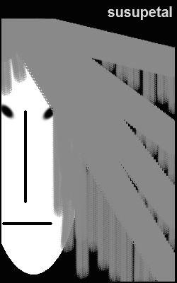 1455789.jpg