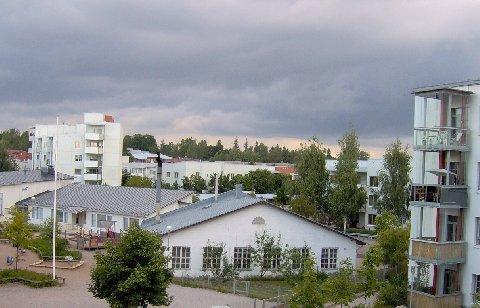 1785914.jpg